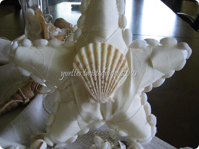 starfish40