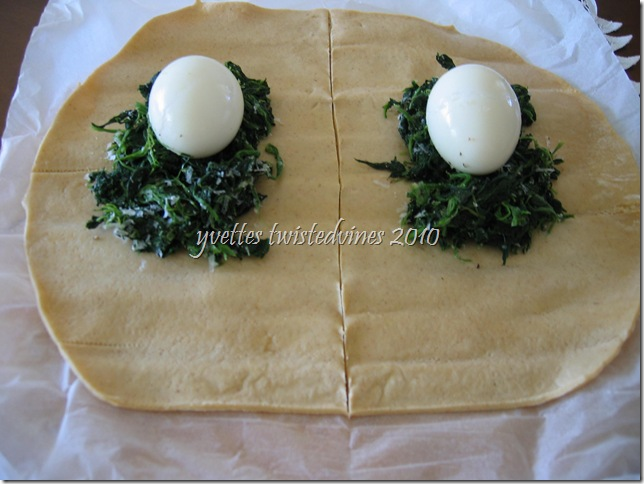 eggs 007