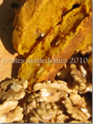 pumpkin and walnut damper