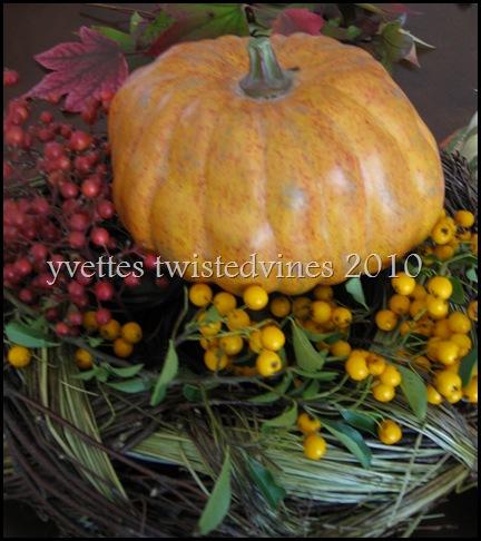 autumn1 047