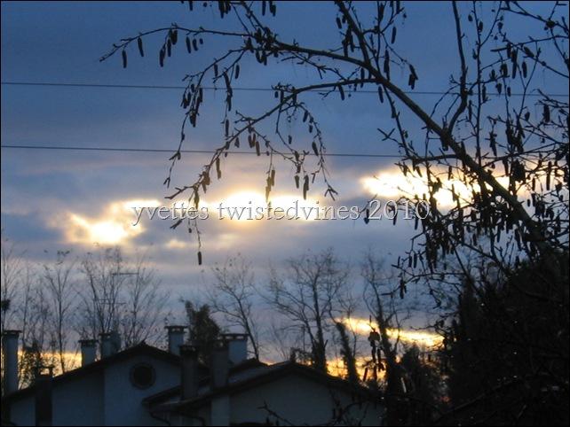 winter 2010 009