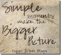biggerpicturebutton-1