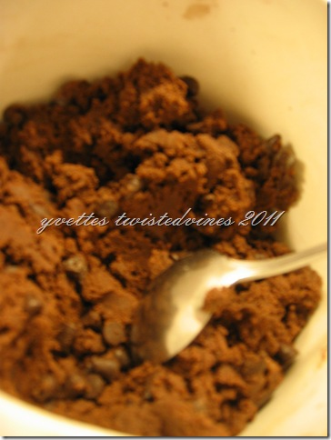 choc chip cookie 2011 028