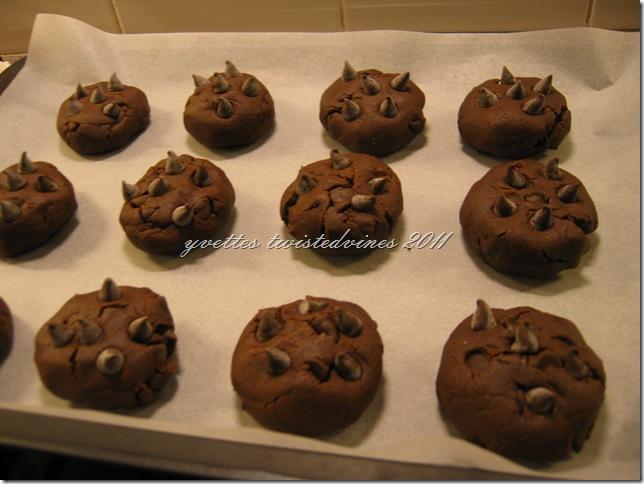 choc chip cookie 2011 034