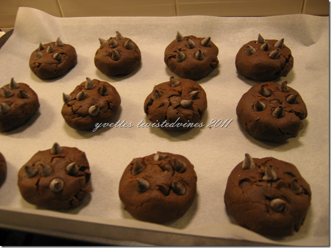 choc chip cookie 2011 034