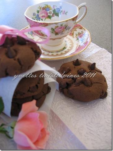 choc chip cookie 2011 041