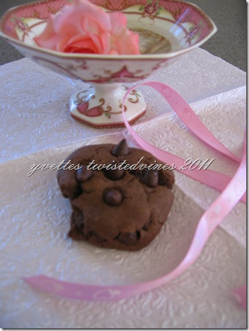 choc chip cookie 2011 044