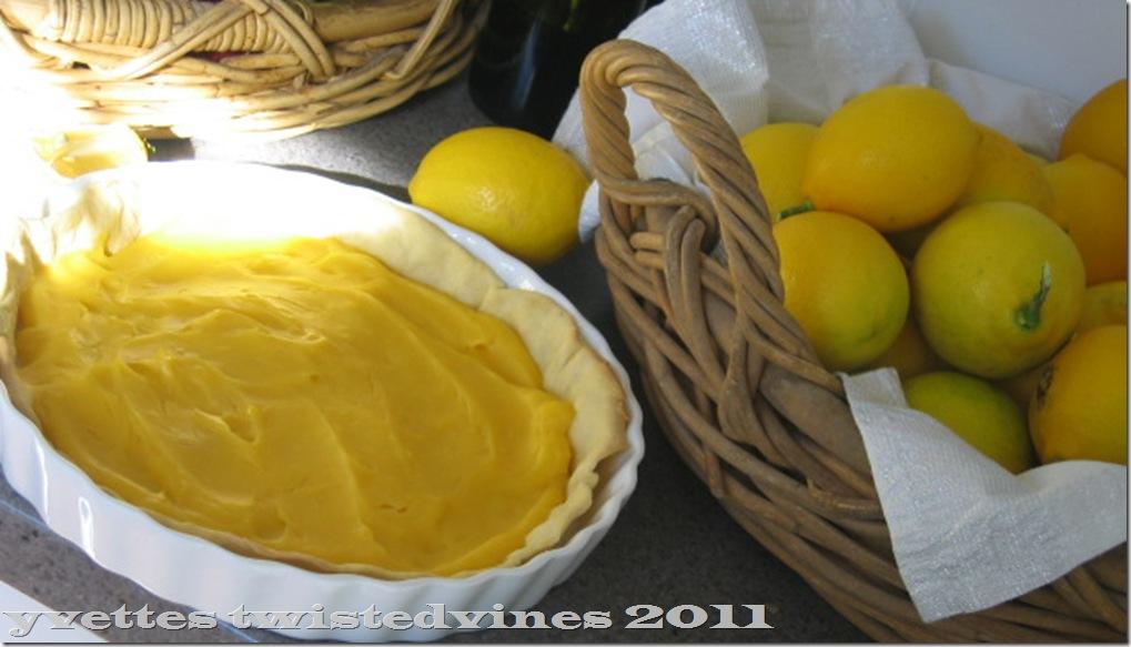 lemon mergpie 013