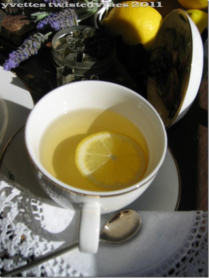 lemon mergpie 021