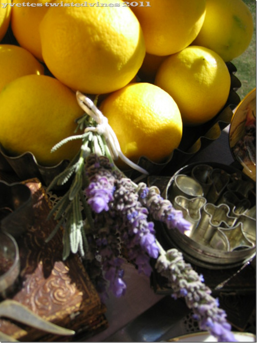 lemon mergpie 024