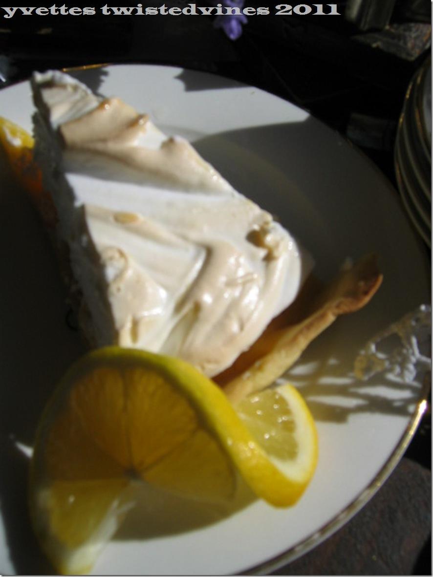 lemon mergpie 025