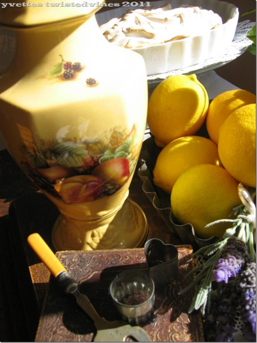 lemon mergpie 028