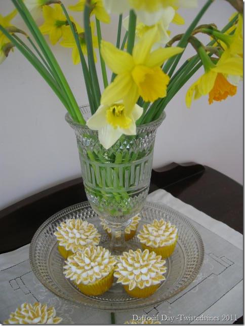 cupcake daff 002