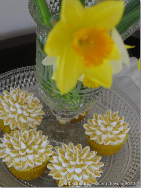cupcake daff 005
