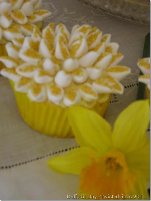 cupcake daff 008