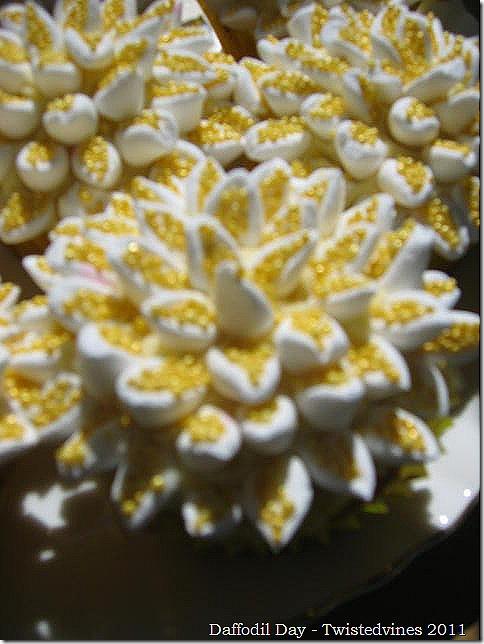 cupcake daff 017