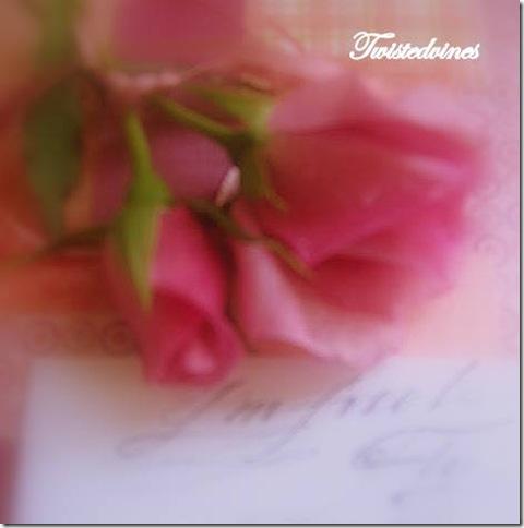pink inspiration 014