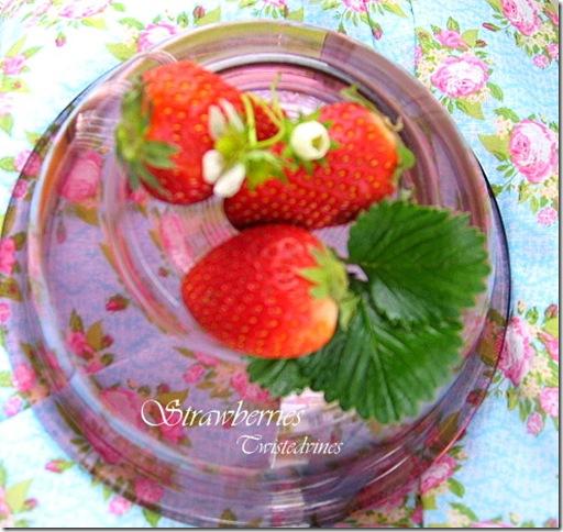 strawberries 002