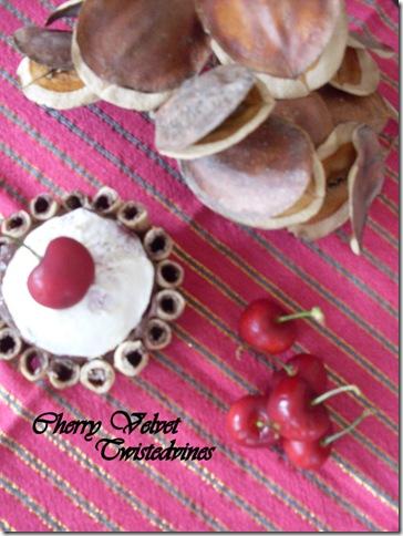 cherry velvet 020