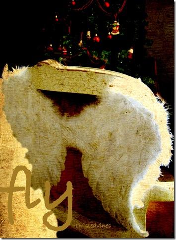 christmas2011 059