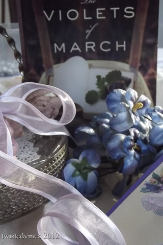 violets in march 016