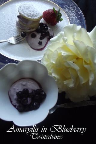 bluelberries 007