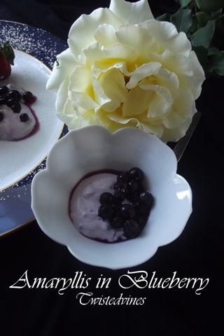 bluelberries 008