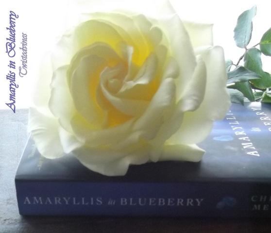 bluelberries 041