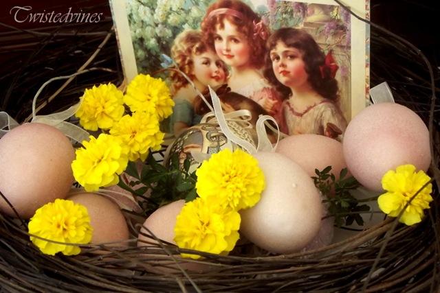 egg facita 002