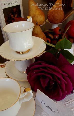 autumn teatime 010-001