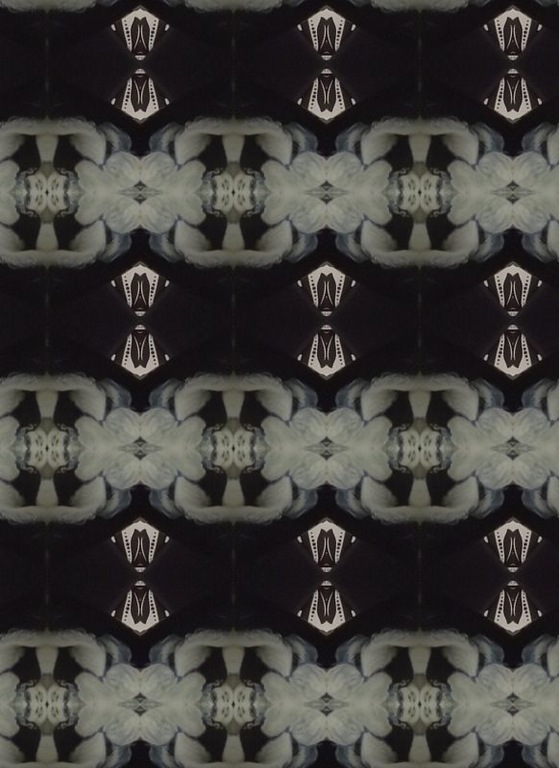 black pattern1