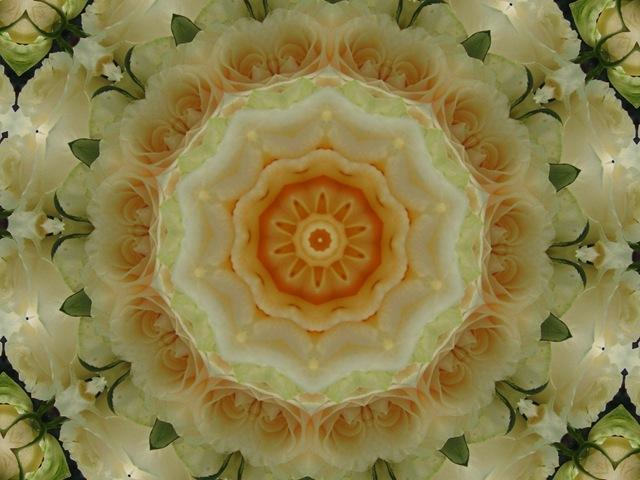 creamroses2